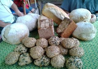 Brot-und-Brötchen